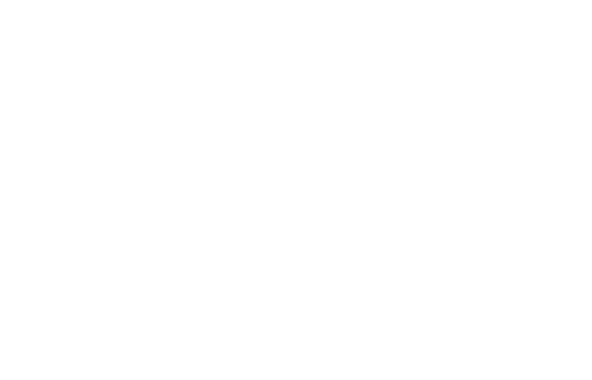 The 1019 Report